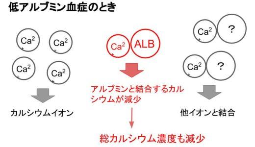 補正カルシウムの計算式【なぜ、アルブミンが必要なのか?】