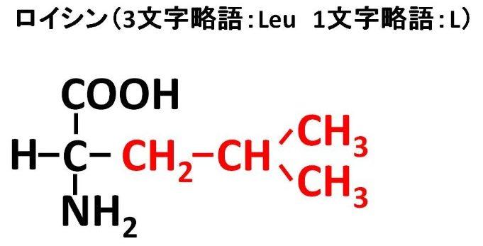 ロイシンの構造式