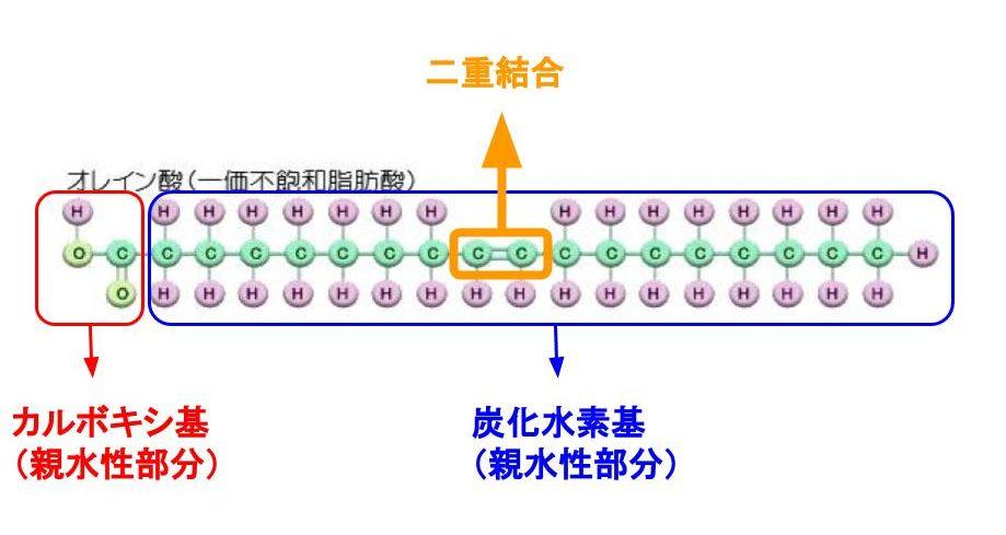 不飽和脂肪酸の構造