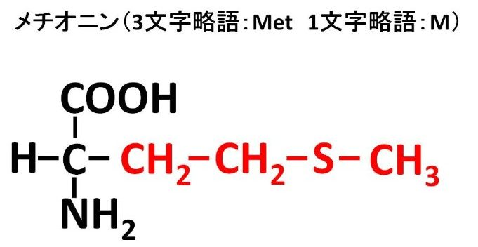 メチオニンの構造式