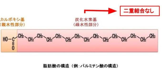 飽和脂肪酸の構造