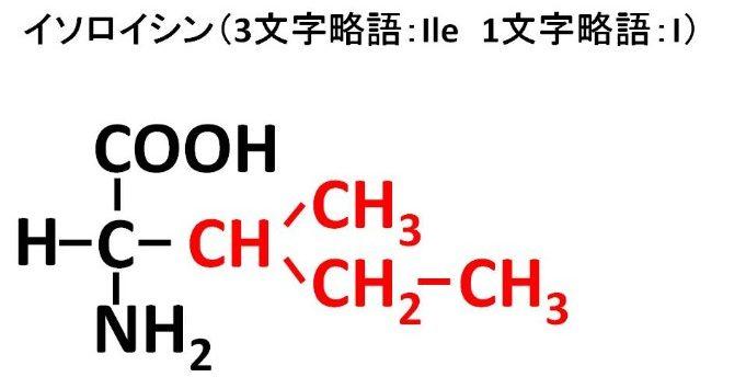 イソロイシンの構造式