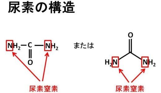 血中尿素窒素とはなにかをわかりやすく解説してみた