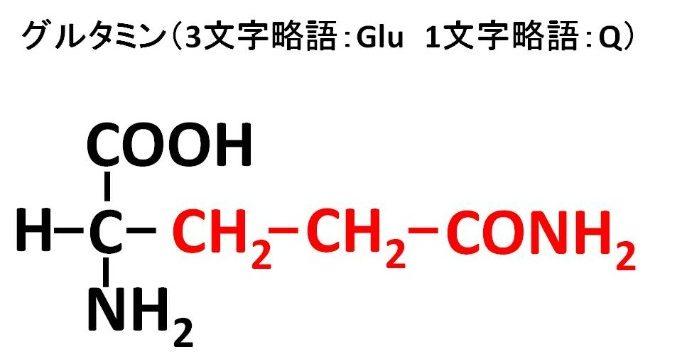 グルタミンの構造式