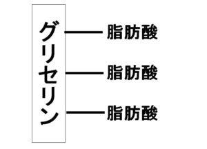 中性脂肪の構造