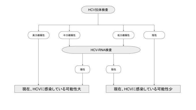 HCV感染の診断フローチャート