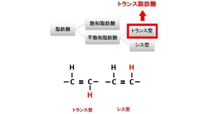 トランス脂肪酸とは
