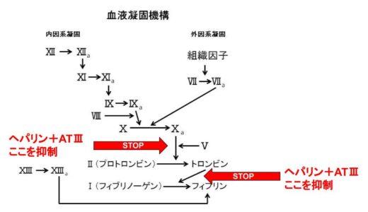 ヘパリンの作用機序をわかりやすくまとめてみた