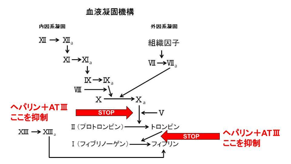 ヘパリンの作用機序