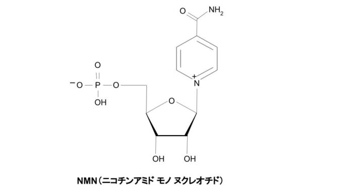 NMN(ニコチンアミドモノヌクレオチド)の構造