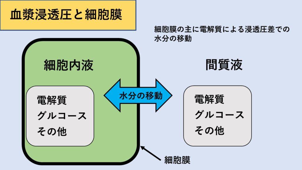 血漿浸透圧のイメージ図