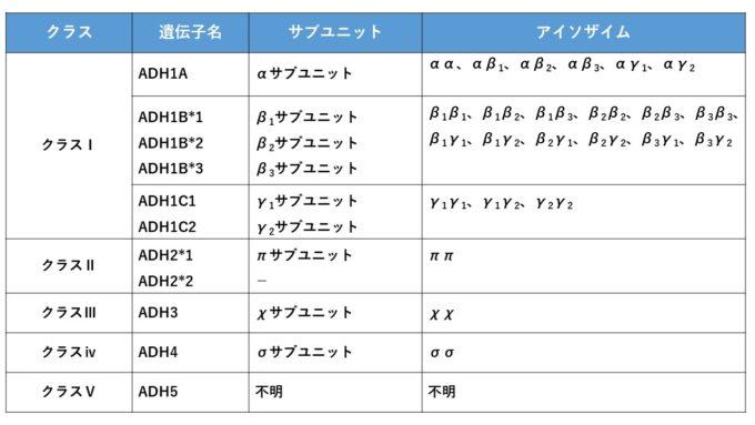 ADH(アルコール脱水素酵素)の遺伝子型やアイソザイム